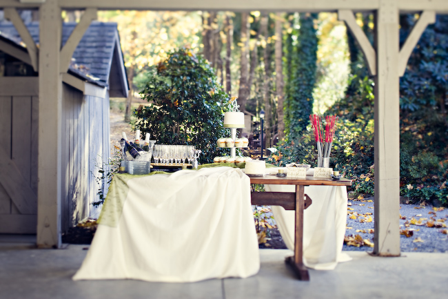 Intimate Mountain Wedding: Part 2 via TheELD.com