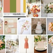 Peach, Sage, and Yellow Inspiration Board
