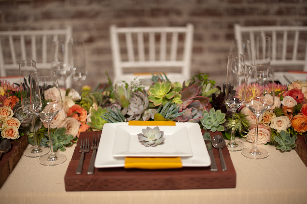 {Modern Organic} Style Dictionary Inspiration Shoot via TheELD.com